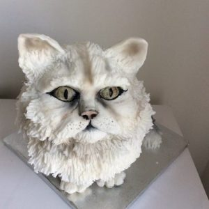 3D moulded Persian cat cake