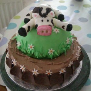 comical cow cake 2 tiers bottom one chocolate butter cream with shocolate snap and mini daisy design, top tier green fondant with grass and daisies topped with a funny black and white cow