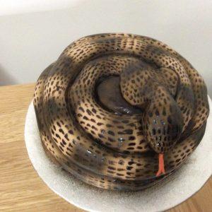 Snake cake £40